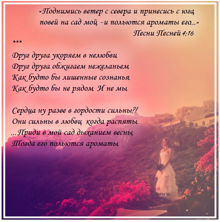 Друг друга укоряем_1